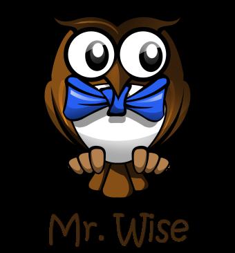 MASCOT - Pixy Owl Mr Gorgeous